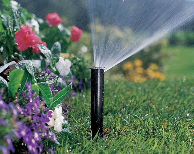 дощувальні системи поливу