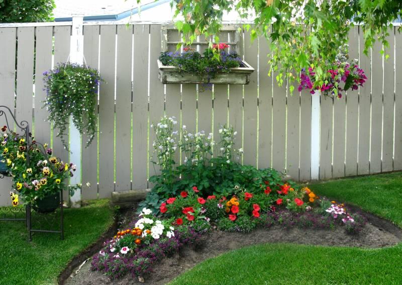 Паркан можна обвішати всілякими контейнерами для рослин і квітів