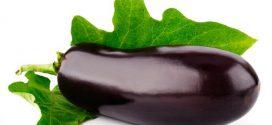 9 порад щодо вирощування здорової розсади баклажанов