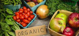 Органические продукты: их польза и особенности производства