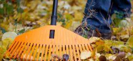 Готуємо сад і город до зими — список заходів та поради
