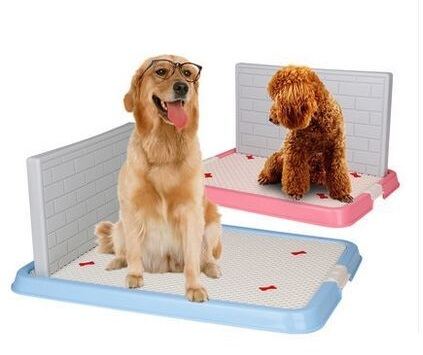 Как организовать туалет для собаки во дворе частного дома