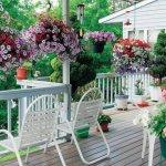 Як прикрасити терасу квітами