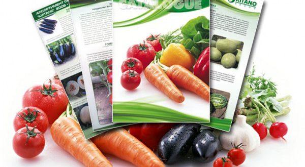 Як вибрати насіння хорошої якості і де їх краще купувати?