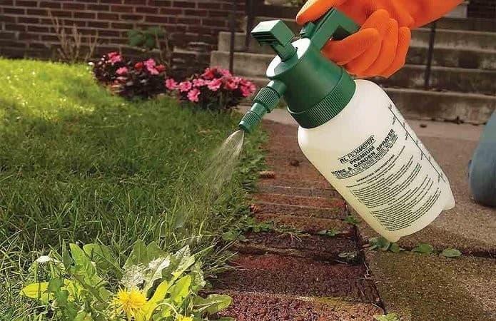 Почвенные гербициды от сорняков