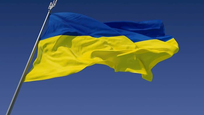 Из какого материала лучше купить флаг Украины