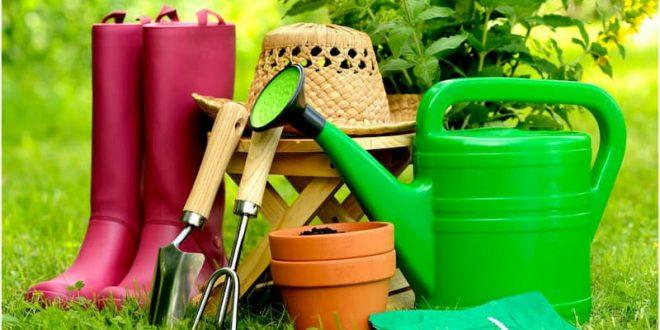 Пора готовиться к дачному сезону: какие товары купить для сада?